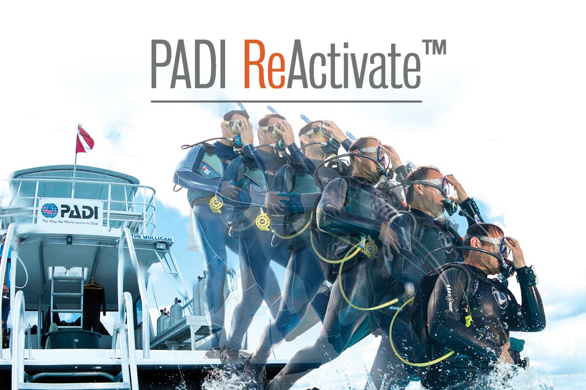 PADI Reactivate Scuba Day